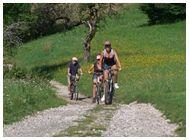 Bike tours Slovenia