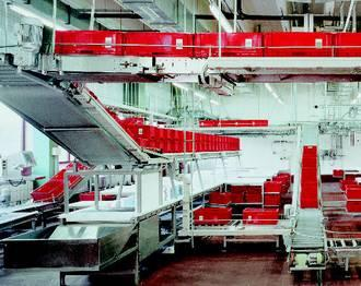 Automated conveyor systems price