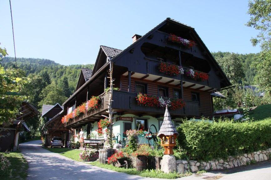 Apartments in Bohinj