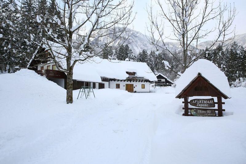Bohinj in winter
