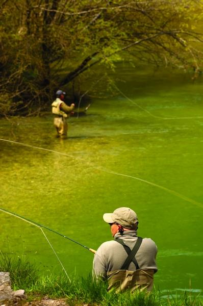 Fly fishing in Slovenia