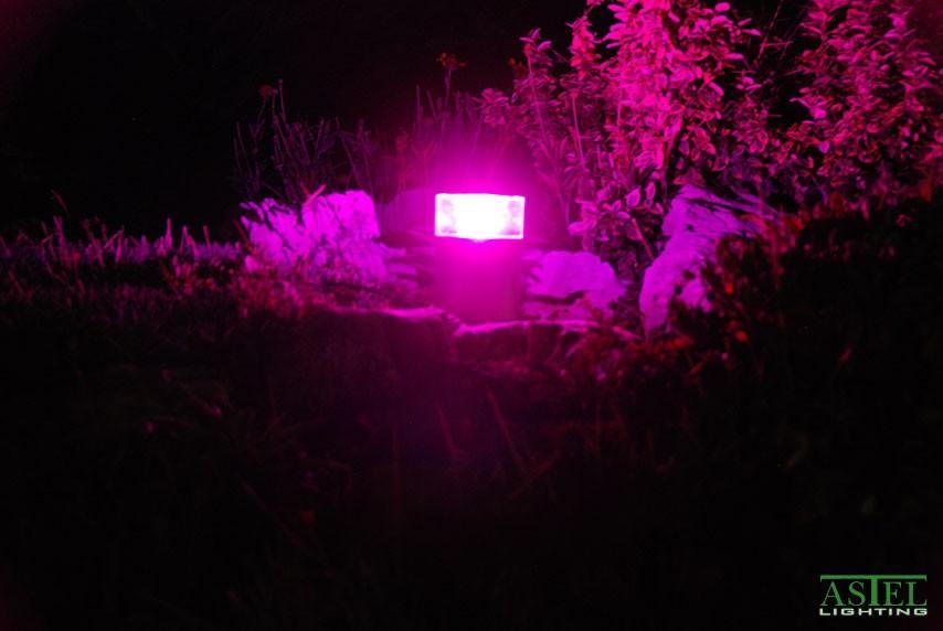 Pool garden LED lights